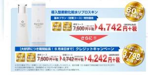導入型柔軟化粧水リプロスキン・価格表